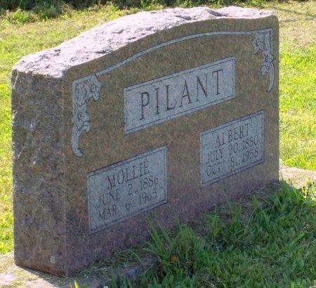 "PILANT, MARY CATHERINE ""MOLLIE"" - Barry County, Missouri   MARY CATHERINE ""MOLLIE"" PILANT - Missouri Gravestone Photos"