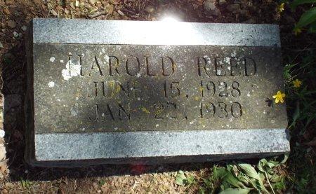 REED, HAROLD DEAN  - Barry County, Missouri | HAROLD DEAN  REED - Missouri Gravestone Photos