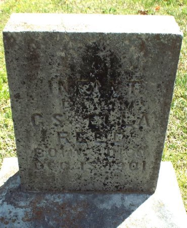 REED, INFANT DAUGHTER  - Barry County, Missouri | INFANT DAUGHTER  REED - Missouri Gravestone Photos