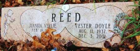 REED, JUANITA VERLIE - Barry County, Missouri | JUANITA VERLIE REED - Missouri Gravestone Photos
