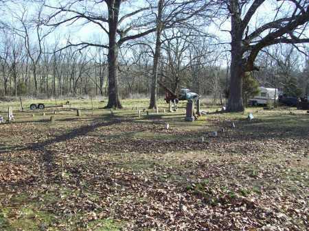 *, ROCK SPRINGS CEMETERY - Barry County, Missouri | ROCK SPRINGS CEMETERY * - Missouri Gravestone Photos