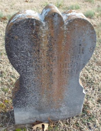 ROLLER, INFANT SON - Barry County, Missouri | INFANT SON ROLLER - Missouri Gravestone Photos
