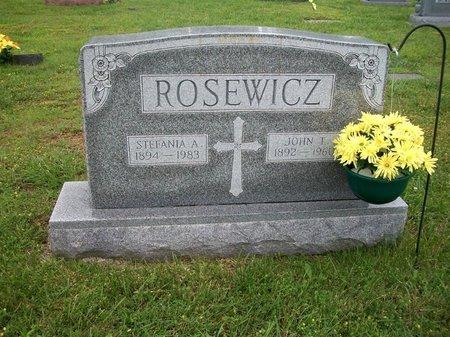 ROSEWICZ, STEFANIA - Barry County, Missouri | STEFANIA ROSEWICZ - Missouri Gravestone Photos