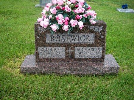 ROSEWICZ, MICHAEL - Barry County, Missouri | MICHAEL ROSEWICZ - Missouri Gravestone Photos