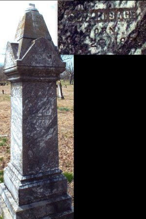SAGE, SUSAN - Barry County, Missouri | SUSAN SAGE - Missouri Gravestone Photos