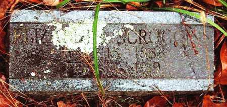 YOUNG SCROGGINS, ELIZABETH - Barry County, Missouri   ELIZABETH YOUNG SCROGGINS - Missouri Gravestone Photos