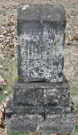 SENTER, JAMES T - Barry County, Missouri | JAMES T SENTER - Missouri Gravestone Photos