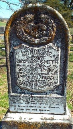 SMITH, CAROLINE  - Barry County, Missouri | CAROLINE  SMITH - Missouri Gravestone Photos