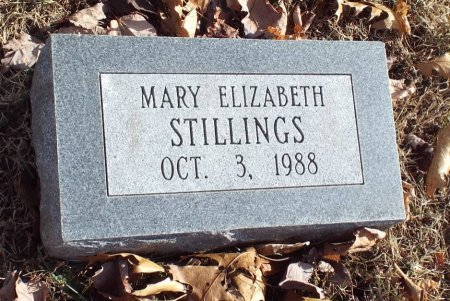 STILLINGS, MARY ELIZABETH - Barry County, Missouri   MARY ELIZABETH STILLINGS - Missouri Gravestone Photos
