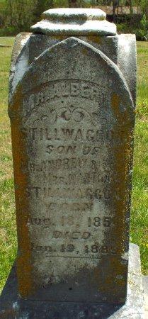 STILLWAGGON, ALBERT W. - Barry County, Missouri | ALBERT W. STILLWAGGON - Missouri Gravestone Photos
