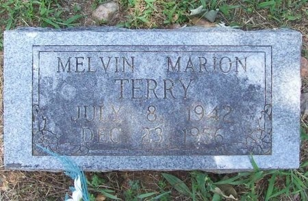 TERRY, MELVIN MARION - Barry County, Missouri | MELVIN MARION TERRY - Missouri Gravestone Photos