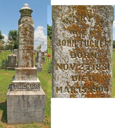 TUCKER, MARY A - Barry County, Missouri | MARY A TUCKER - Missouri Gravestone Photos