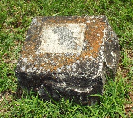 UNKNOWN, ILEGIBLE  - Barry County, Missouri | ILEGIBLE  UNKNOWN - Missouri Gravestone Photos