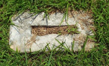 UNKNOWN, ILEGIBLE  - Barry County, Missouri   ILEGIBLE  UNKNOWN - Missouri Gravestone Photos