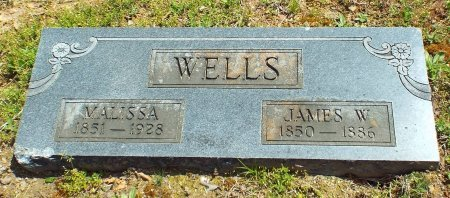 WELLS, MALISSA - Barry County, Missouri | MALISSA WELLS - Missouri Gravestone Photos