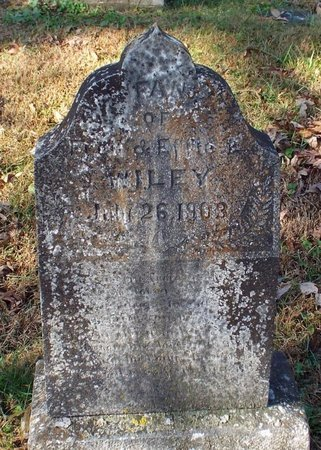 WILEY, INFANT - Barry County, Missouri | INFANT WILEY - Missouri Gravestone Photos