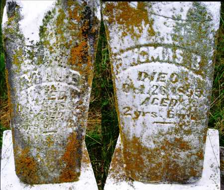 CHANDLER, MAUD - Barry County, Missouri | MAUD CHANDLER - Missouri Gravestone Photos