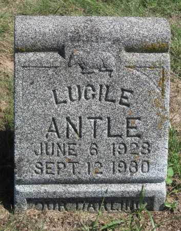 ANTLE, LUCILE - Barry County, Missouri | LUCILE ANTLE - Missouri Gravestone Photos