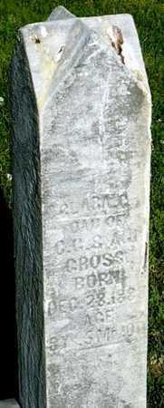 GROSS, CLARA C - Callaway County, Missouri | CLARA C GROSS - Missouri Gravestone Photos