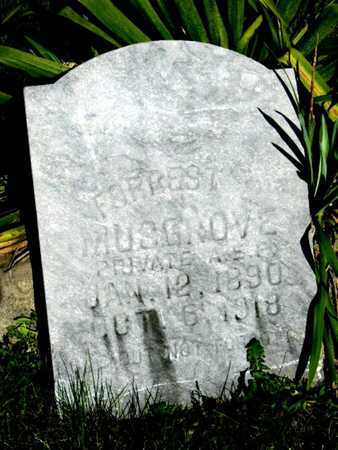 MUSGROVE, FORREST EDWARD VETERAN WWI - Callaway County, Missouri   FORREST EDWARD VETERAN WWI MUSGROVE - Missouri Gravestone Photos