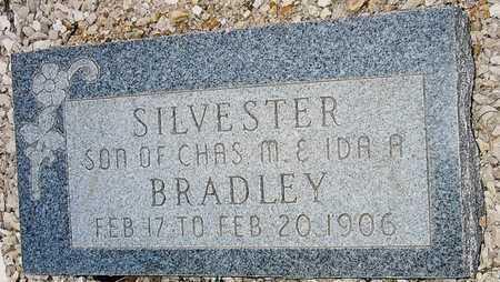 BRADLEY, SILVESTER - Camden County, Missouri | SILVESTER BRADLEY - Missouri Gravestone Photos