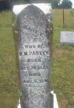 PANKEY, MARY ELIZABETH - Cedar County, Missouri   MARY ELIZABETH PANKEY - Missouri Gravestone Photos