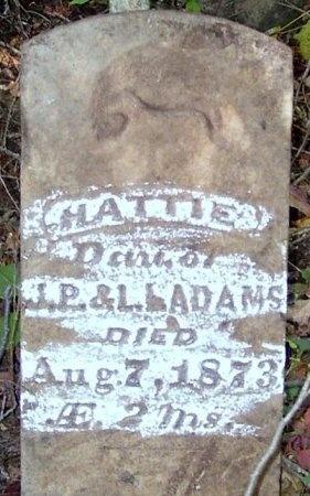 ADAMS, HATTIE - Chariton County, Missouri | HATTIE ADAMS - Missouri Gravestone Photos
