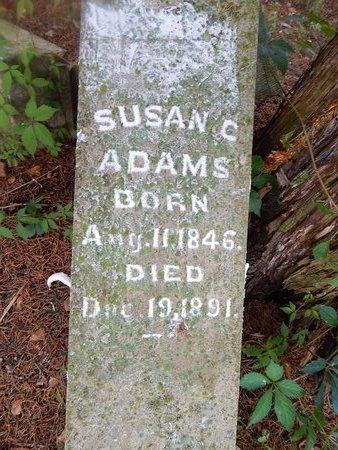 BAIN ADAMS, SUSAN C - Christian County, Missouri | SUSAN C BAIN ADAMS - Missouri Gravestone Photos
