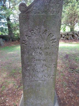 BAIN, MARY ANN - Christian County, Missouri | MARY ANN BAIN - Missouri Gravestone Photos