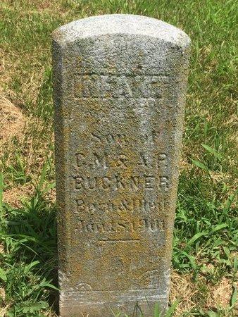 BUCKNER, INFANT SON - Christian County, Missouri   INFANT SON BUCKNER - Missouri Gravestone Photos