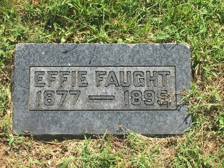FAUGHT, EFFIE - Christian County, Missouri | EFFIE FAUGHT - Missouri Gravestone Photos