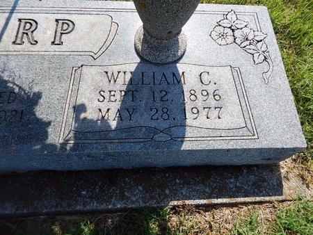 HARP, WILLIAM C (CLOSE-UP) - Christian County, Missouri | WILLIAM C (CLOSE-UP) HARP - Missouri Gravestone Photos