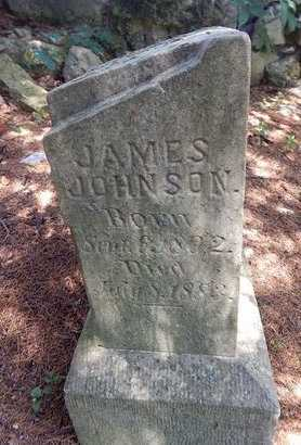 JOHNSON, JAMES LEWIS - Christian County, Missouri   JAMES LEWIS JOHNSON - Missouri Gravestone Photos