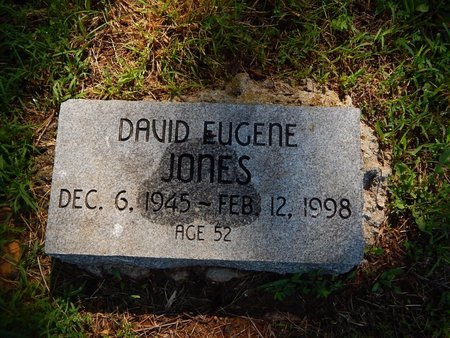 JONES, DAVID EUGENE - Christian County, Missouri | DAVID EUGENE JONES - Missouri Gravestone Photos