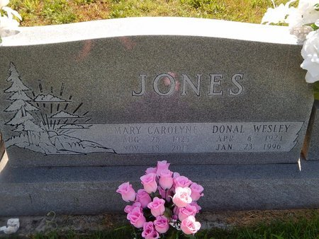 JONES, DONAL WESLEY - Christian County, Missouri | DONAL WESLEY JONES - Missouri Gravestone Photos