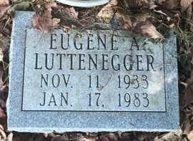 LUTTENEGGER, EUGENE A - Christian County, Missouri | EUGENE A LUTTENEGGER - Missouri Gravestone Photos
