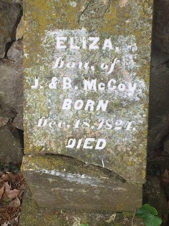 MCCOY, ELIZA (SECOND MARKER) - Christian County, Missouri | ELIZA (SECOND MARKER) MCCOY - Missouri Gravestone Photos