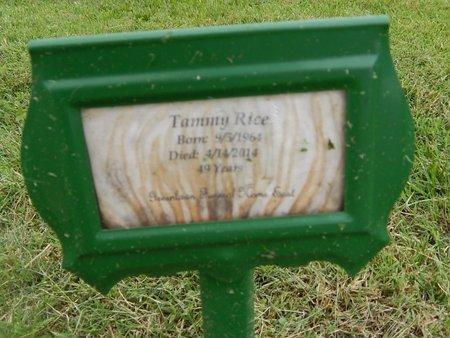 RICE, TAMMY - Christian County, Missouri | TAMMY RICE - Missouri Gravestone Photos