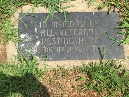 *, VETERAN'S MEMORIAL - Christian County, Missouri | VETERAN'S MEMORIAL * - Missouri Gravestone Photos