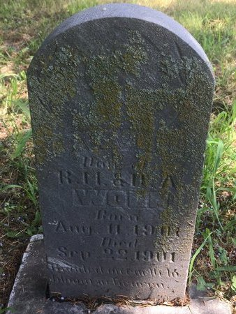 WOLF, EVA L - Christian County, Missouri | EVA L WOLF - Missouri Gravestone Photos