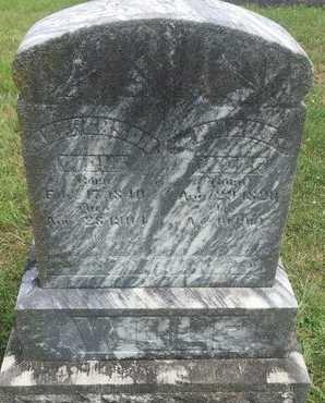 WOLF, JEFFERSON - Christian County, Missouri | JEFFERSON WOLF - Missouri Gravestone Photos