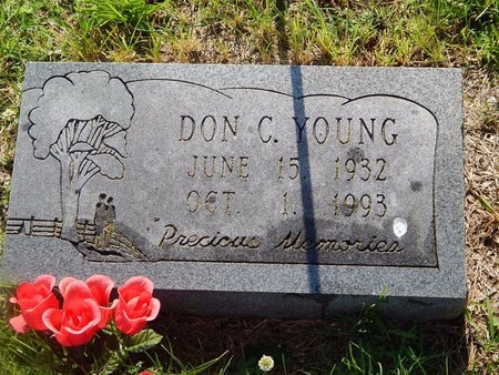 YOUNG, DON C - Christian County, Missouri | DON C YOUNG - Missouri Gravestone Photos