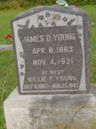 YOUNG, WILLIE F - Christian County, Missouri | WILLIE F YOUNG - Missouri Gravestone Photos