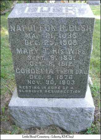 BUSH BUSH, MARY TILLMAN - Clay County, Missouri | MARY TILLMAN BUSH BUSH - Missouri Gravestone Photos