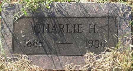 ALBERTSON, CHARLIE HENRY - Cole County, Missouri | CHARLIE HENRY ALBERTSON - Missouri Gravestone Photos