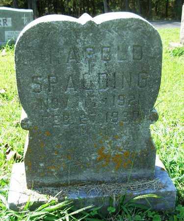 SPALDING, HAROLD - Cole County, Missouri | HAROLD SPALDING - Missouri Gravestone Photos