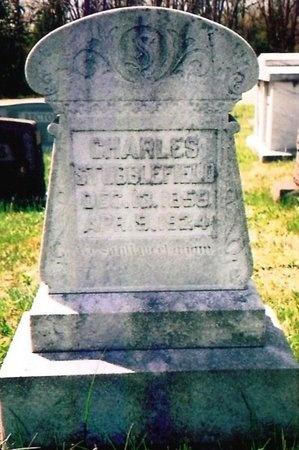 STUBBLEFIELD, CHARLES - Crawford County, Missouri   CHARLES STUBBLEFIELD - Missouri Gravestone Photos
