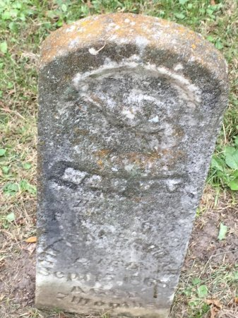 PITTSENBARGAR, MARY FRANCES - DeKalb County, Missouri | MARY FRANCES PITTSENBARGAR - Missouri Gravestone Photos