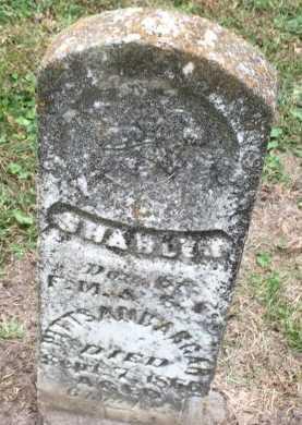 PITTSENBARGAR, SHARLET ANJANETTE - DeKalb County, Missouri | SHARLET ANJANETTE PITTSENBARGAR - Missouri Gravestone Photos