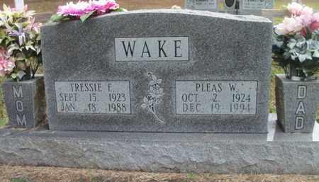 WAKE, PLEAS W. - Douglas County, Missouri | PLEAS W. WAKE - Missouri Gravestone Photos